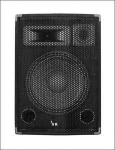 "Kolumna estardowa Voice Kraft 10"" DISCO 10B"